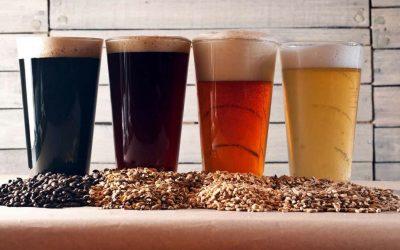¿Cómo catar una cerveza?